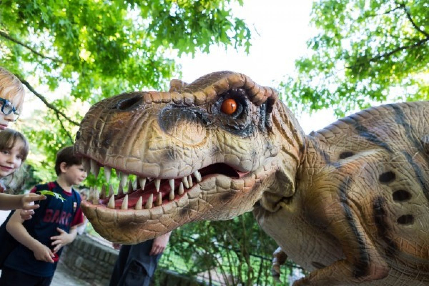 Photo of an animatronic T-Rex dinosaur named Denzel