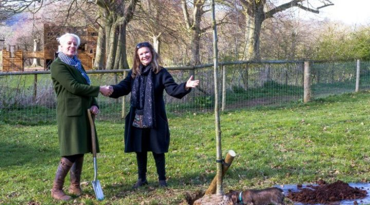 Image for Giffords Circus putting down roots at Sudeley Castle