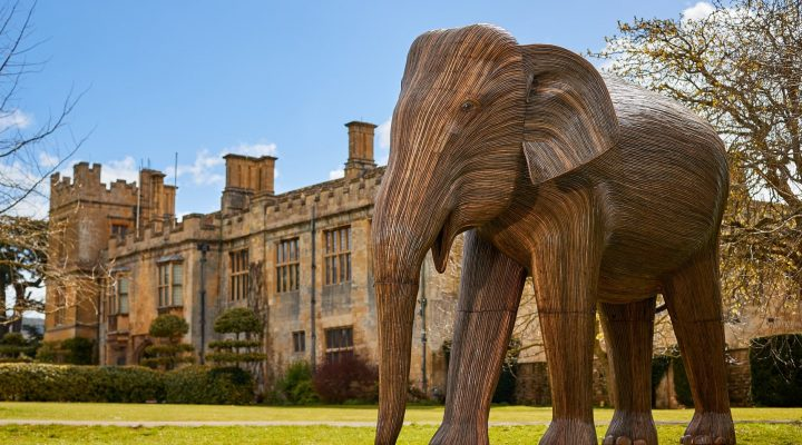 Elephant Family at Sudeley Castle