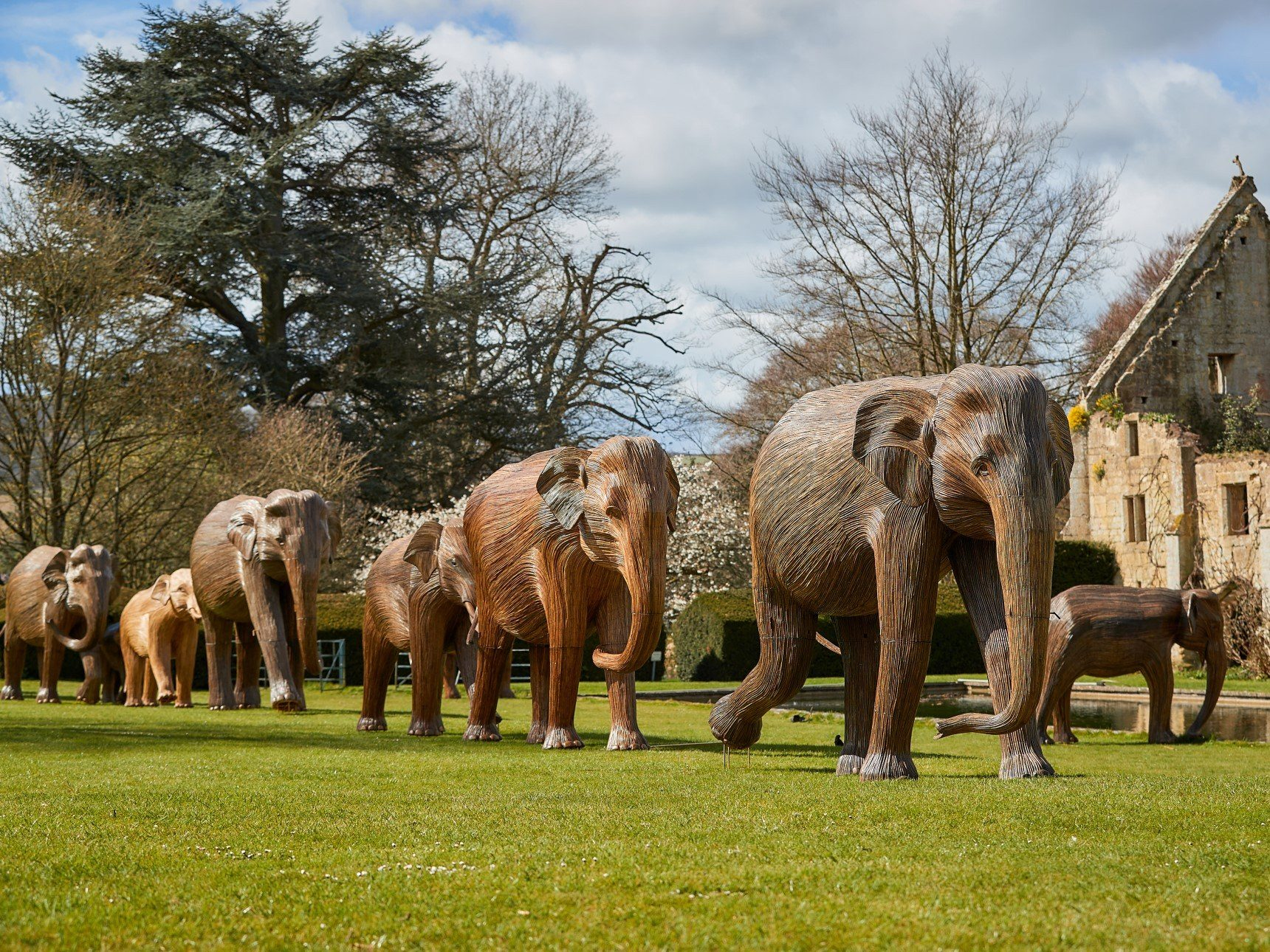Herd of Elephant Sculptures in position walking across castle lawn