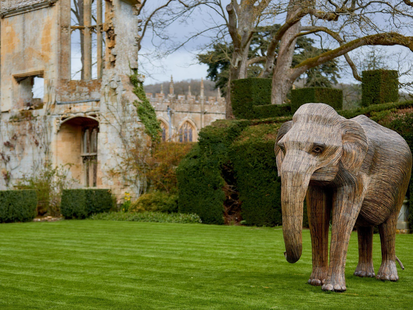 Matriarch elephant in front of castle ruins
