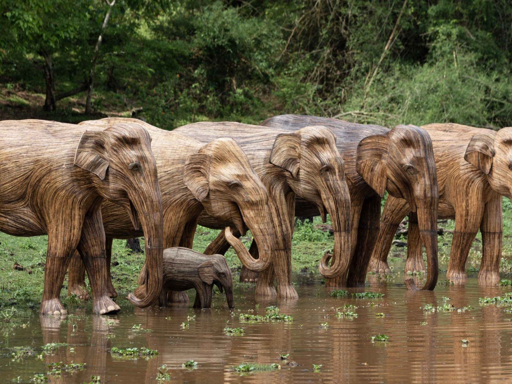 Herd of elephants at waterhole