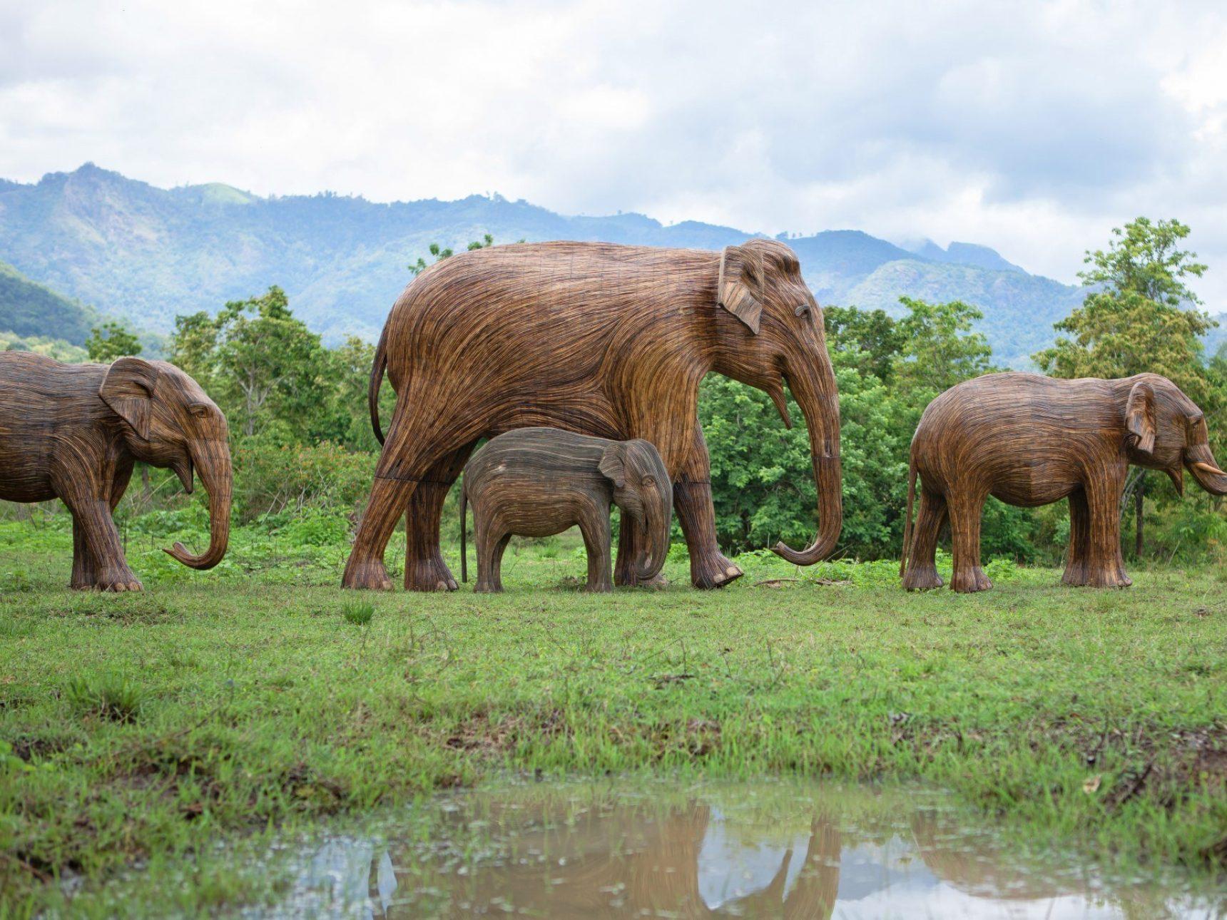 Herd of four elephants walking through grasslands