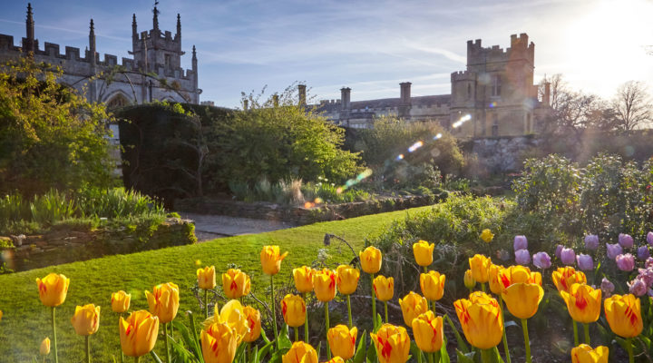 Mother's Day at Sudeley Castle